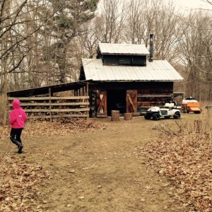 Maple syrup shack