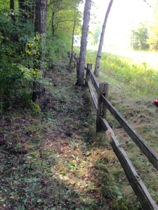 Clearing brush fence